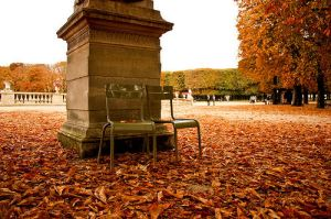 Paris, fall